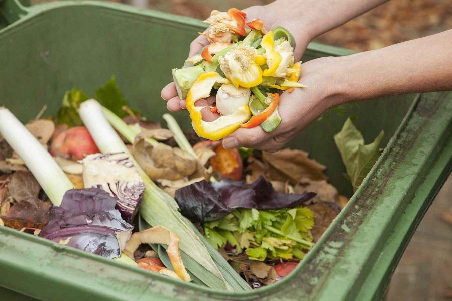 Органика - не мусор!